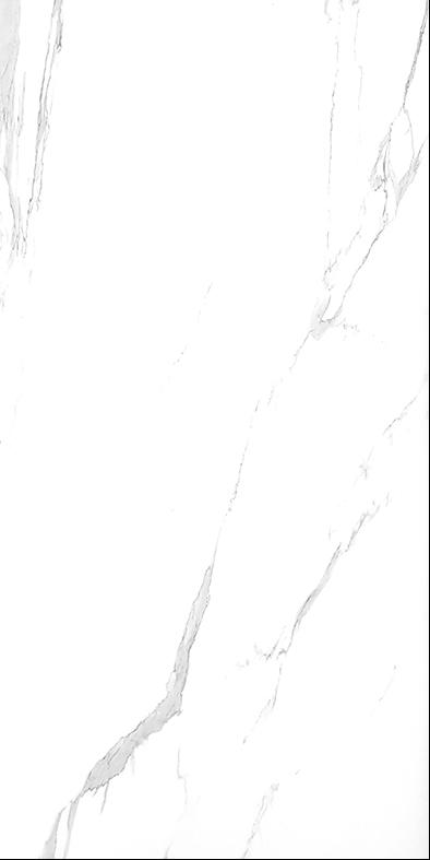 GS12002 (600*1200)