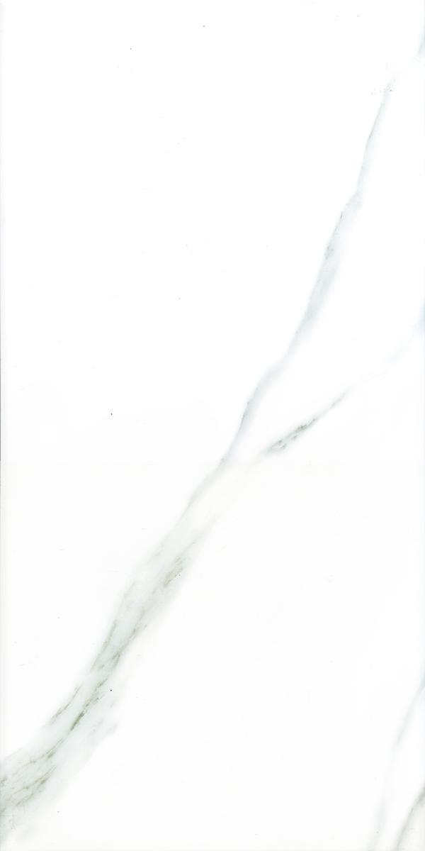 3D101 (유광 스크린)